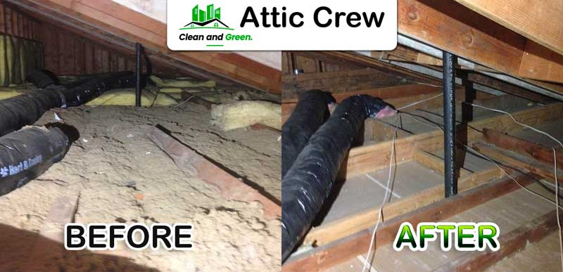 attic clean up
