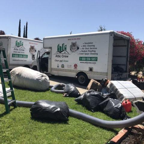 Pest Control in Palo Alto, San Jose, San Rafael » About