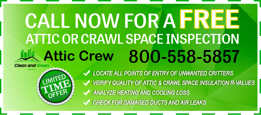 free attic crawl space insulation inspection offer